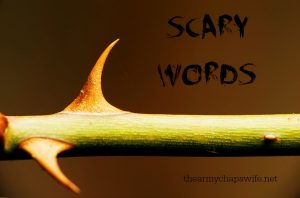Scary Words